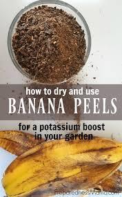 best 25 organic compost ideas on pinterest organic fertilizer