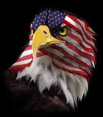 America Eagle Meme - flag faced american eagle blank template imgflip