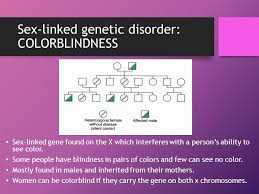 Can A Woman Be Color Blind Genetic Disorders Mistakes In The Dna Code Mizzz Foster Ppt