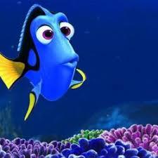 Nemo Meme - dory from nemo 5 second memory meme generator