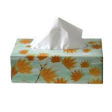 box of tissue paper tissue paper boxes sivakasi mercury graphics id 1199002955