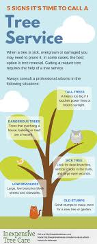 when to call an arborist instead inexpensive tree care