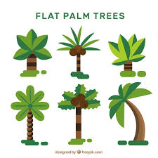 set of palm trees in flat design vector free