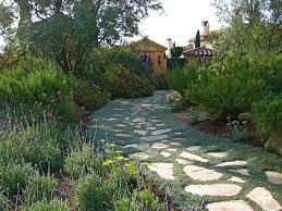 drought tolerant landscape design with drought tolerant landscape