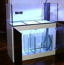 vasche acquario 1200 litri il mio acquario definitivo pagina 7