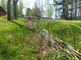 wattle fence with arch top roots pinterest wattle fence