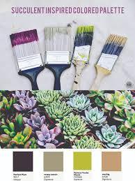 succulent color palette east coast creative blog color wheel
