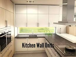 Contemporary Galley Kitchens Single Kitchen Galley Normabudden Com