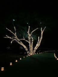 Holiday Lights In Houston Best by Christmas Christmas Lights Dallas Image Ideas Coolest Ever Best