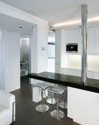 7 Black And White Kitchen by Apartment Kitchen Modern Contemporary Black And White Staradeal Com