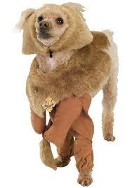 dog lion mane halloween costumes best costumes for halloween