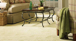 Blue Ribbon Carpet Carpet Cleaning Fort Worth Upholstery Cleaning Arlington Tx