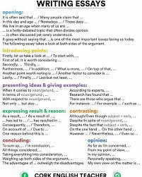 best 20 opinion essay examples ideas on pinterest persuasive