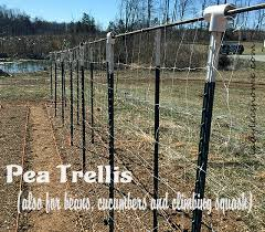 How To Build A Trellis How To Build Pea Trellis Lady Lee U0027s Home
