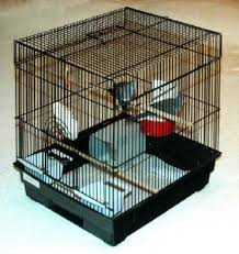 How To Make End Table Dog Crate by Diamond Dove Home Page Caring For Diamond Doves