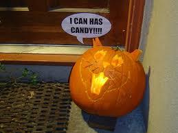 Meme Pumpkin - halloween memes pumpkins and jack o lanterns for the internet
