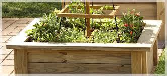 woodworkers easy growing raised garden beds