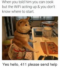 Dog Cooking Meme - when you told him you can cook but the wifi acting up you don t