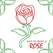 how to draw how to draw a rose step by step hellokids com
