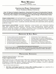 Example Of Best Resume Format by 21 Best Best Construction Resume Templates U0026 Samples Images On