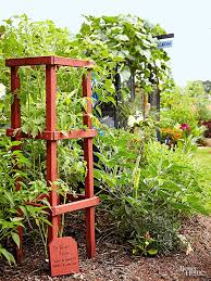 diy tomato cage ideas bless my weeds