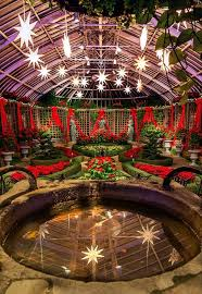 phipps conservatory christmas lights 68 best winter flower show images on pinterest pittsburgh pa
