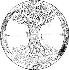 explaining the meaning of the celtic tree of celtic