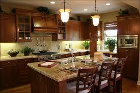 Buy Kitchen Cabinets Cheap Kitchen Dark Maple Cabinets Dark Brown Kitchen Cabinets Kitchen