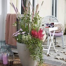 unterschied terrasse balkon bloom s rezepte zum selbermachen saisonale gerichte aus der