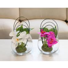 Cheap Glass Vase Online Get Cheap Glass Orchid Vase Aliexpress Com Alibaba Group