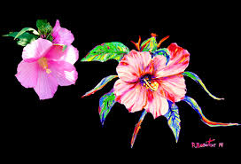 how to paint pink hibiscus flower petals using acrylic as