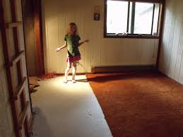 painting a particle board floor other items cabin 476