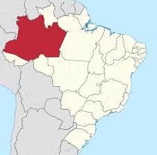 Amazon Rainforest Map Amazonas Brazilian State Wikipedia