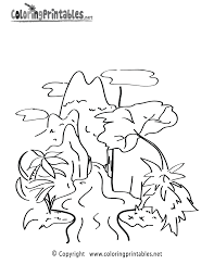 rainforest coloring page a free nature coloring printable