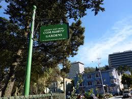 Community Gardens In Urban Areas Golden Gate Park Community Garden U2013 A Day Made Better U2013 Medium