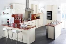 house kitchen ideas kitchen designs for small homes amazing ideas kitchen designs for