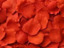 Silk Rose Petals Poppy Orange Silk Rose Petals Little Things Favors