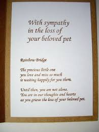 in sympathy pet loss sympathy card cardtales pets pet loss