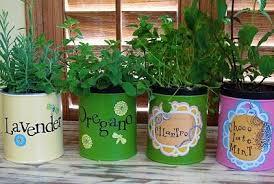 Herb Garden Winter - plant a fall winter herb garden late gardening austin