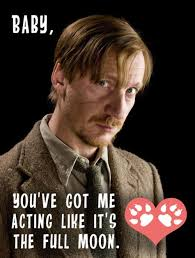 Harry Potter Valentines Meme - 79 best valentines images on pinterest hilarious hilarious