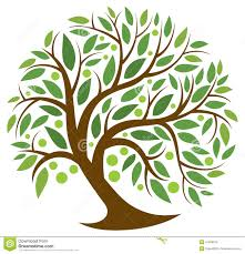tree of life tree of life stock vector image of open fruit green 41048916
