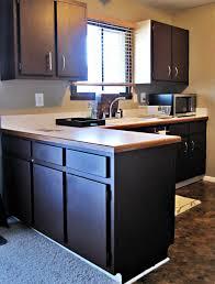 white oak wood nutmeg lasalle door painting kitchen cabinets black