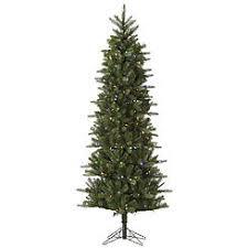 vickerman trees slim sears