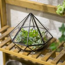garden tabletop diamond glass geometric terrarium indoor balcony