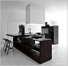 exquisite minimalist kitchen design with black furnishings and big