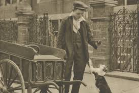 in the victorian era you could get a job delivering meat to cats