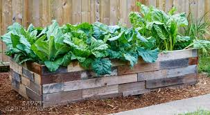 Raised Beds For Gardening 6 Things To Think About Before Preparing A Raised Bed Garden