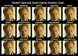 David Caruso Meme - horatio cane aka david caruso emotion chart after watching flickr
