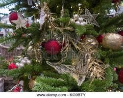 Garden Decorations For Sale Poinsettia Christmas Celebration Display In The Botanical Garden