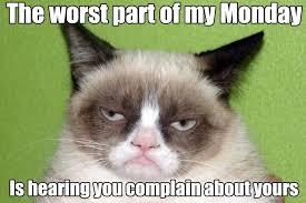Grumpy Cat Meme Clean - grumpy cat simply stacie